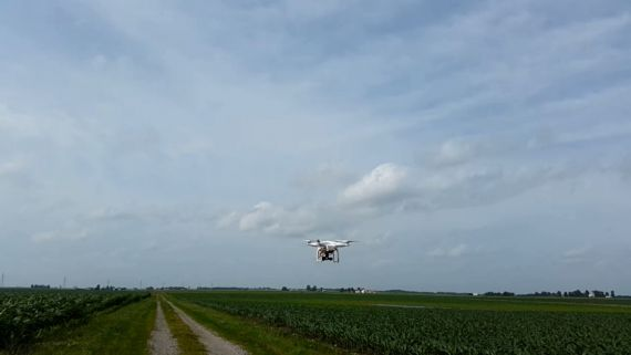 Small Unmanned Aerial Systems for High-throughput Phenotyping
