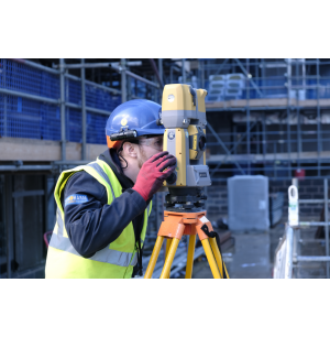 How Can Surveyors Optimally Profit from the Digitalization in the Construction Industry?